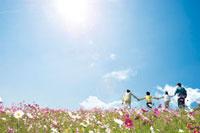 花畑で手をつなぐ家族
