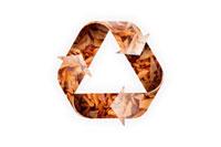 落ち葉のリサイクルマーク 07800014559| 写真素材・ストックフォト・画像・イラスト素材|アマナイメージズ