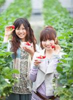 イチゴを持った笑顔の日本人女性2人