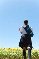 かばんを持っている女子学生の後姿とヒマワリ畑