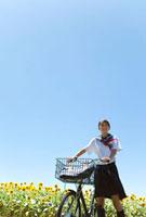 自転車を押している女子学生とヒマワリ畑
