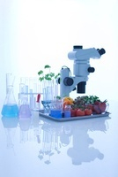 実験器具と食べ物