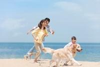 砂浜を走る犬と家族