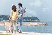 海岸を散歩するカップル