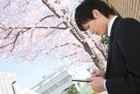 桜の木の下でタブレットPCを操作するビジネスマン