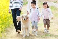 歩く4人家族と犬