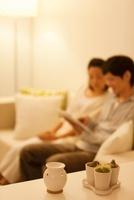 ソファーに座るカップルとアロマとサボテン