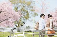 桜とほほえむカップル