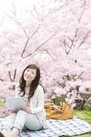 桜とタブレットPCを持つ女性