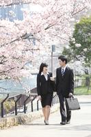 桜の下のビジネスマンとビジネスウーマン
