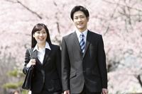 桜の前のビジネスマンとビジネスウーマン