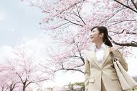 桜の下に立つビジネスウーマン