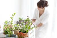 鉢植えと女性