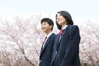 桜と男女学生2人
