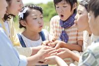 タンポポの綿毛を吹く子供6人