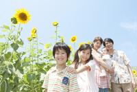 ひまわり畑と笑顔の家族5人