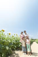 ひまわり畑と笑顔の家族4人