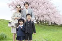 桜と笑顔の4人家族