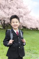 桜と笑顔の男の子