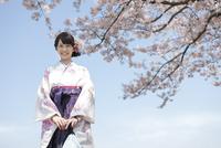 桜と袴姿の女子大生