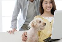 ノートパソコンを見る犬とカップル