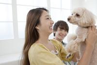 犬を抱っこする女性 07800054359| 写真素材・ストックフォト・画像・イラスト素材|アマナイメージズ