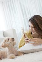 スマートフォンで犬の写真を撮る女性 07800054384| 写真素材・ストックフォト・画像・イラスト素材|アマナイメージズ