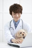 犬とパソコンに向かう獣医 07800054643| 写真素材・ストックフォト・画像・イラスト素材|アマナイメージズ