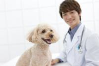 犬と笑顔の獣医 07800054652| 写真素材・ストックフォト・画像・イラスト素材|アマナイメージズ