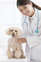 犬と笑顔の獣医 07800054659| 写真素材・ストックフォト・画像・イラスト素材|アマナイメージズ