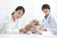犬と飼い主と獣医 07800054664| 写真素材・ストックフォト・画像・イラスト素材|アマナイメージズ