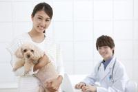 犬を抱える女性と獣医 07800054669| 写真素材・ストックフォト・画像・イラスト素材|アマナイメージズ