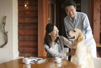 犬をあやす中高年夫婦 07800056012| 写真素材・ストックフォト・画像・イラスト素材|アマナイメージズ