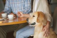 犬と夫婦 07800056015| 写真素材・ストックフォト・画像・イラスト素材|アマナイメージズ