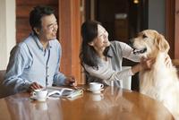 犬をあやす中高年夫婦 07800056043| 写真素材・ストックフォト・画像・イラスト素材|アマナイメージズ