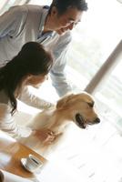 犬をあやす中高年夫婦 07800056074| 写真素材・ストックフォト・画像・イラスト素材|アマナイメージズ