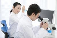 顕微鏡を覗く研究員