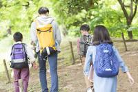 課外学習中の小学生と先生の後姿 07800058553| 写真素材・ストックフォト・画像・イラスト素材|アマナイメージズ
