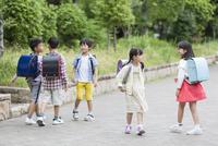 登下校中の小学生5人 07800058565| 写真素材・ストックフォト・画像・イラスト素材|アマナイメージズ