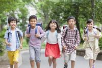 登下校中の小学生5人 07800058609| 写真素材・ストックフォト・画像・イラスト素材|アマナイメージズ