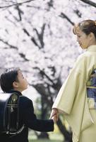 桜と親子 07900000322| 写真素材・ストックフォト・画像・イラスト素材|アマナイメージズ
