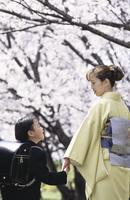 桜と親子 07900000332| 写真素材・ストックフォト・画像・イラスト素材|アマナイメージズ