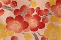 梅模様 09501010183| 写真素材・ストックフォト・画像・イラスト素材|アマナイメージズ