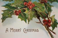 セイヨウヒイラギのクリスマスカード