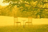 野原の木陰の下のテーブルと2脚のいす 09501013742| 写真素材・ストックフォト・画像・イラスト素材|アマナイメージズ