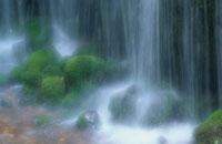 白糸の滝 6月下旬