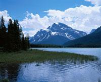 春 ミスタヤ山 カナダ