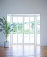 部屋、植物、窓