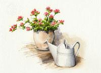イラスト、花瓶、ポット