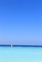 モルディブの海の浮かぶウィンドサーフィン